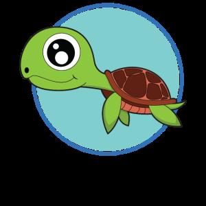 Schildkröte süße Baby Tiere