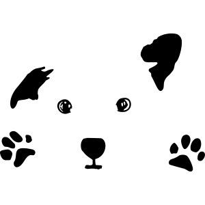 Hund, Hündchen, Hundegesicht