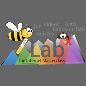 iLabX - The Internet Masterclass