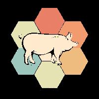 Schwein Geschenkidee