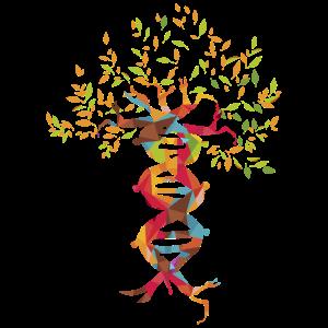 Baum des Lebens Tee, DNA-Produkt, Genetik-Design