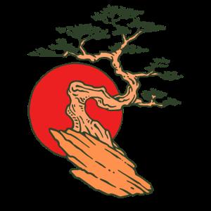 Bonsai Baum japanische Kunst