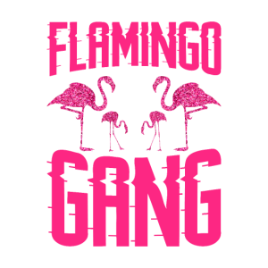 flamingo gang Flamingo Shirt für Nachwuchsbosse