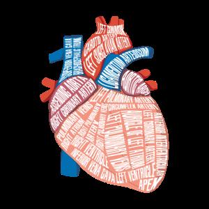 Herz Anatomie Biologe Herzschlag Medizin Geschenk