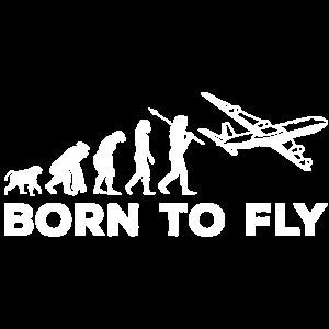 Fliegen Evolution
