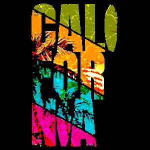 Kalifornien California USA Sommer Strand Surfer