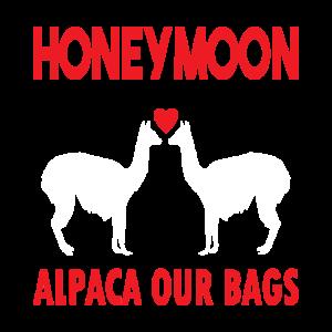 Alpaca Honeymoon