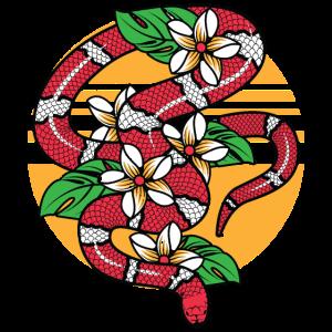 Snake Tropical rote Schlange Natter Königsnatter