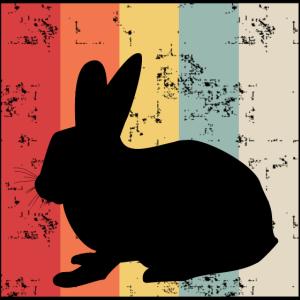 Vintage Kaninchen