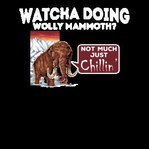 Was macht Wooly Mammoth? - Lustig sarkastisch
