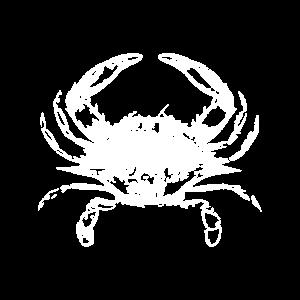 Krabbe Meeresbewohner