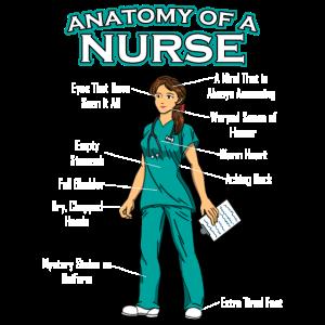 Krankenschwester Anatomie Medizin Krankenhaus