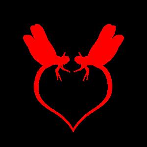 Libelle Liebe