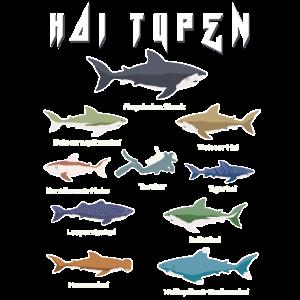 Hai Typen Megadolon,weisser Hai,Hammerhai,Tigerhai