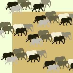 Elefantenherde beige (1)