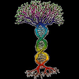Chakra DNA Baum des Lebens.