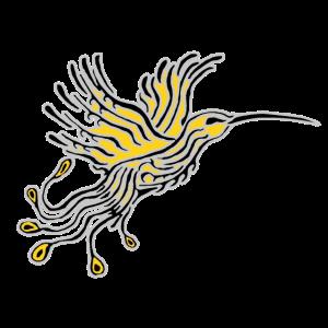 Kolibri-Phoenix Grau-Orpin