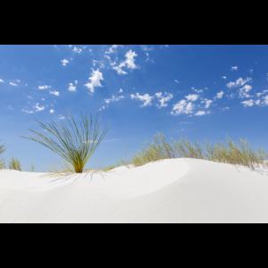 White Sands Impression