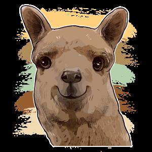 Alpaka lustiges Tier lachen Humor Spucken