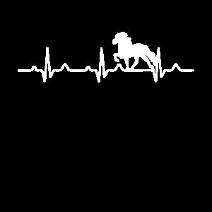 Islandpferd Herzschlag