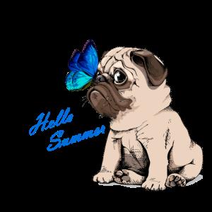 Hello Summer - Hund Mops