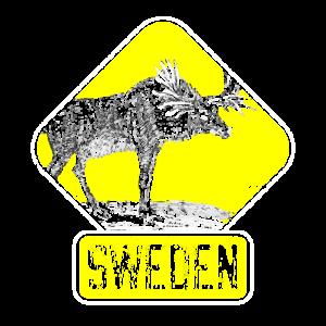 Schweden Elch