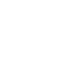 Evolution Cellist - Cello Spieler T-Shirt