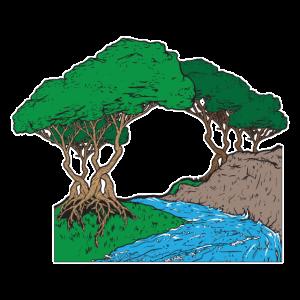 Fluss der Natur