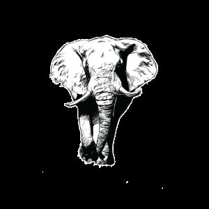 Elefanten Shirt für Liebhaber & Fans als Geschenk