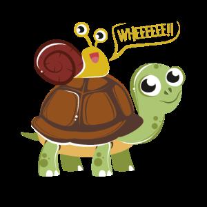 Schildkröte Schnecke Lustig Niedlich Grafik