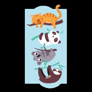 Katze, Panda, Koala, Faultier hängenden Zweig