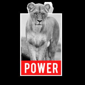 Löwin - Power Cooles Löwen Design