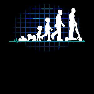Elektroroller Evolution