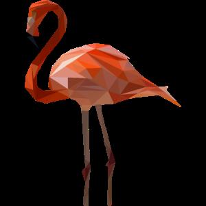 Flamingo tropischer Vogel