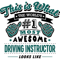 driving instructor world no1 most awesom