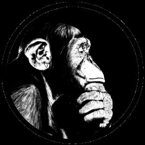 Denke nach Affe Schimpanse