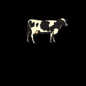 Rinderfilet krümelt nicht - Rind - Kuh Rindfleisch