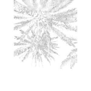 Tropical summer vibes