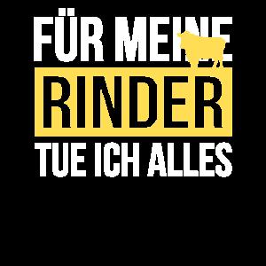 Rinder Rinderstall Rind