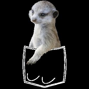 Erdmännchen Meerkat in Brusttasche Hemdtasche