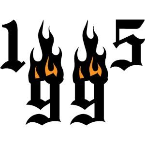 1995 flames