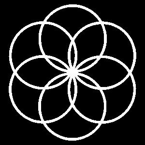 lifeflower