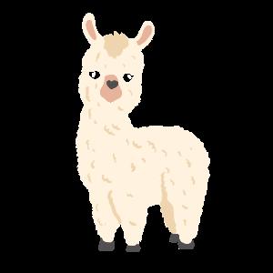 Lustiges Alpaka - Pako