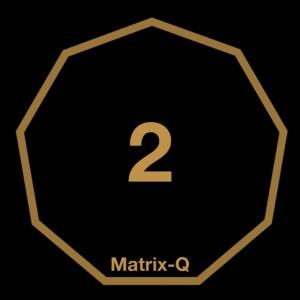 Matrix-Q MUG 2