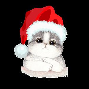 Frohe Weihnachten Frohes Fest Weihnachtsmann Katze