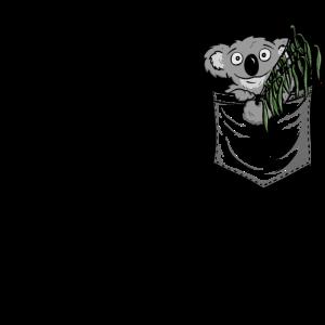 Eukalyptus fressender Koala Bär In Deiner Tasche