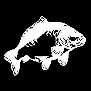 Carp Karpfen Karpfenfischer Geschenk Karpfenangler