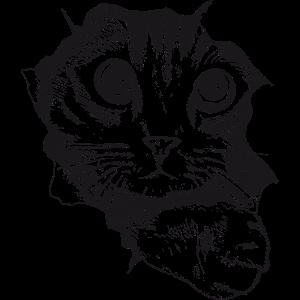 Katze gezeichnet