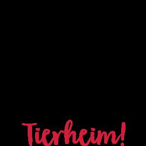 tierheim Hund