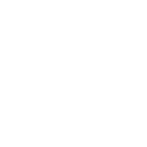 Läppy der Laptop